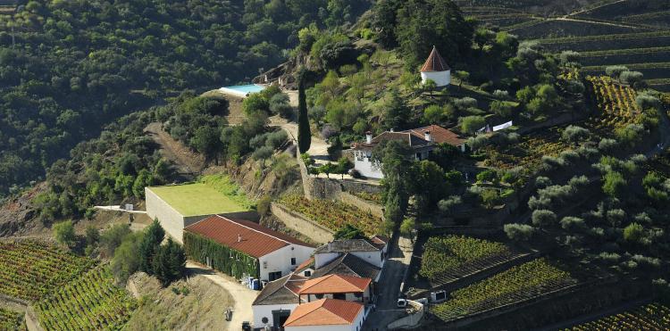 Quinta de D. Carlos